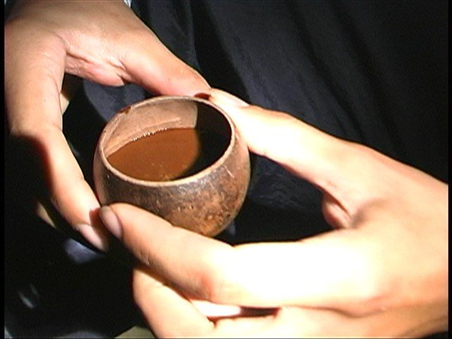 Ayahuasca Tea